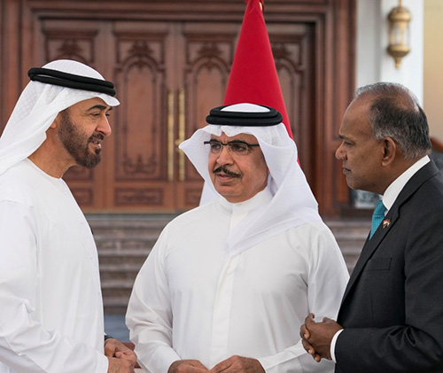 Abu Dhabi Receives Interior Ministers, Security Alliance Officials