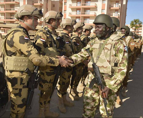 Egypt, Sahel-Saharan States Start Counter-Terrorism Drills
