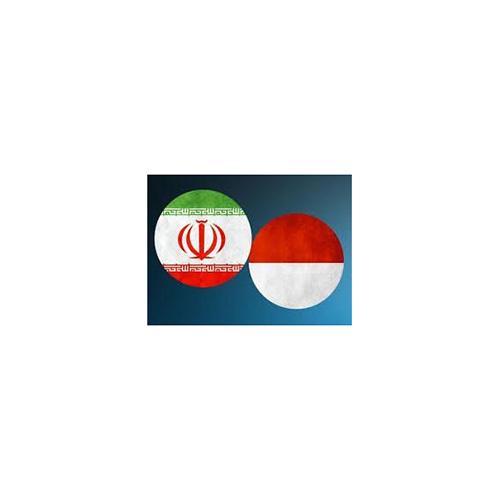 Iran, Indonesia Pledge to Expand Defense Cooperation