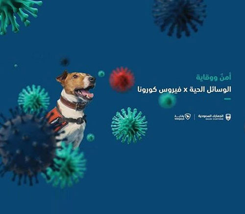 UAE, Saudi Arabia Use Sniffer Dogs to Detect COVID-19 Patients at Airports