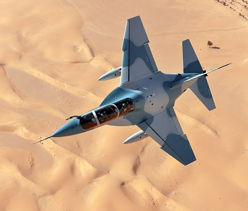 REGIONAL SURVEY:DEFENSE POSTURE IN THE UNITED ARAB EMIRATES (UAE)