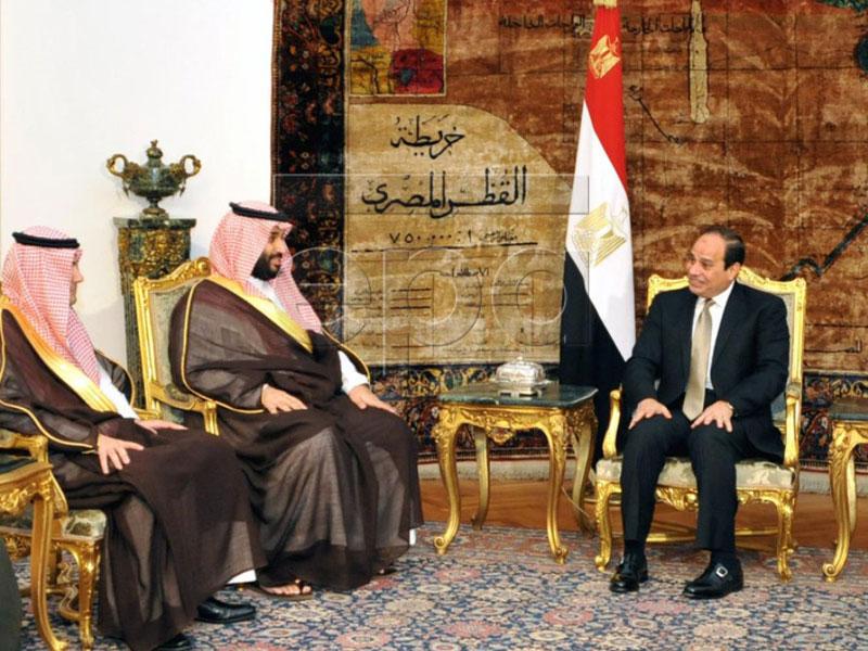 Egyptian President, Saudi Defense Minister Meet in Cairo