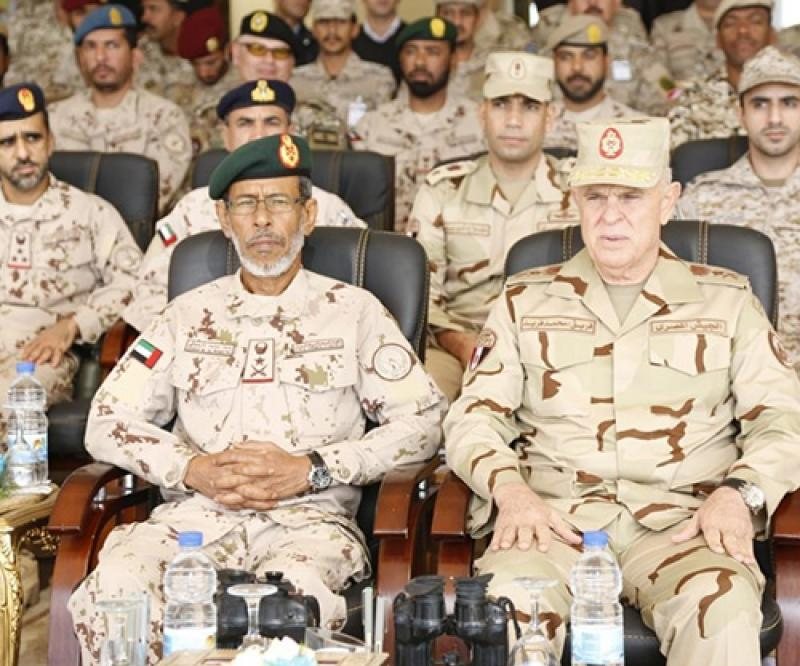 'Arab Shield 1' Drills Conclude in Egypt