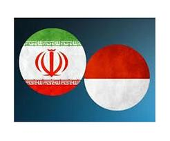 Iran, Indonesia Pledge to Expand Defense Cooperation