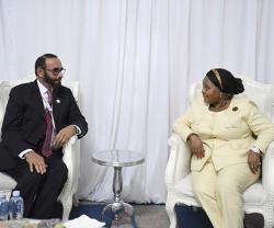 UAE, South Africa Discuss Defense Cooperation