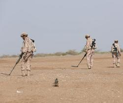 UAE Playing Key Role in Global, Regional Demining Efforts