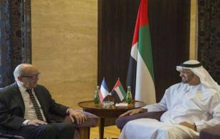 UAE, France Discuss Stronger Military Ties