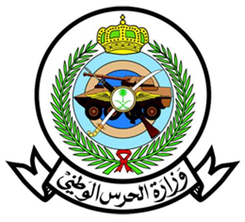 Saudi Arabia Names New Chiefs of National Guard Navy