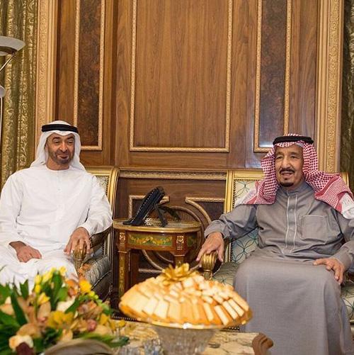 Saudi King, Abu Dhabi Crown Prince Discuss Regional Issues