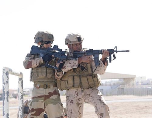 UAE, French Armed Forces Start 'Al Humaimat 10' Exercise