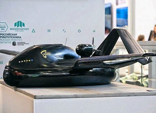 Russia to Test Reconnaissance-Strike Chirok Drone in 2015