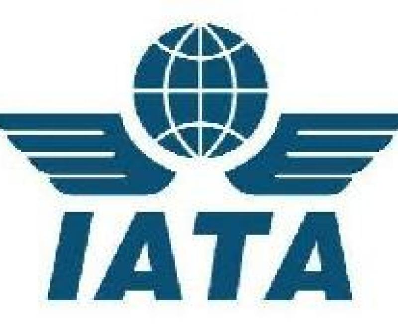Airline Industry to Lose $5.6bn in 2010